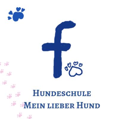 Facebook Fanpage Hundeschule Mein lieber Hund