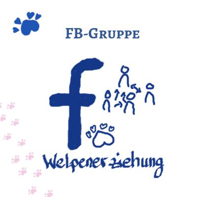 Facebook Gruppe Welpenerziehung
