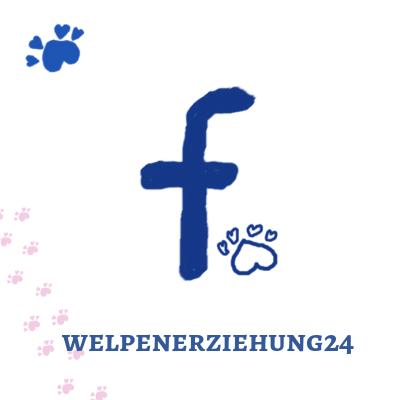 Facebook Fanpage Welpenerziehung