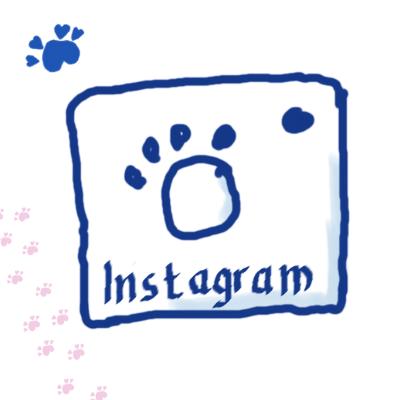 Mein lieber Hund bei Instagram