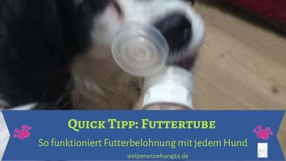 Futtertube für Hunde